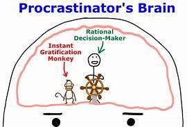pro brain