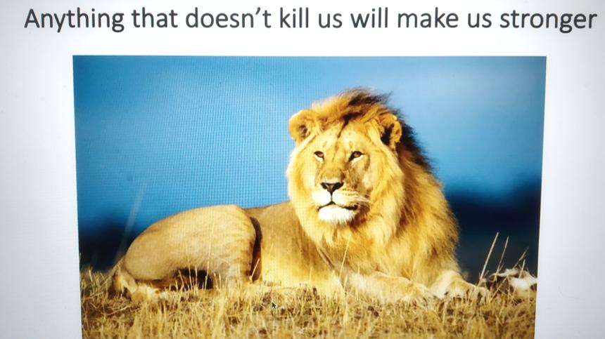 end lion